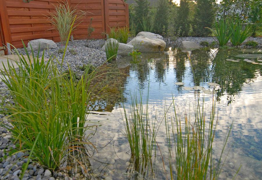 wasser im garten quellsteine bachlauf wasserpflanzen wasserspiele wasserfall teich biotop. Black Bedroom Furniture Sets. Home Design Ideas