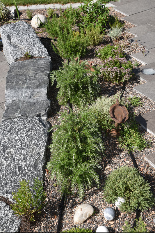 bepflanzung gartenbepflanzung gartengestaltung gartenpflanzen gartenbegr nung stauden. Black Bedroom Furniture Sets. Home Design Ideas