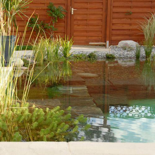 wasser im garten, quellsteine, bachlauf, wasserpflanzen ... - Wasserspiele Im Garten Edelstahl