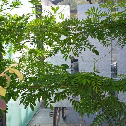 Sichtschutzwand Windschutz Sichtschutz Fur Gartensitzplatz